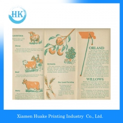 Colorful Animal Printing Brochure Huake Printing